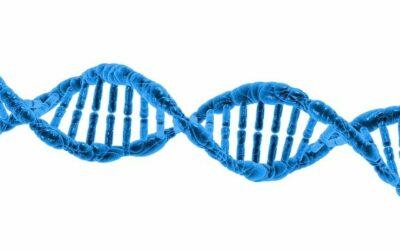Nature vs Nurture and the Power of Genetics
